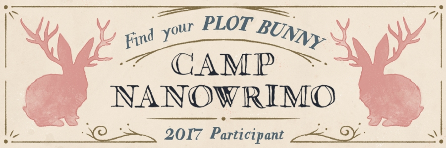 Camp-2017-Participant-Twitter-Header.jpg