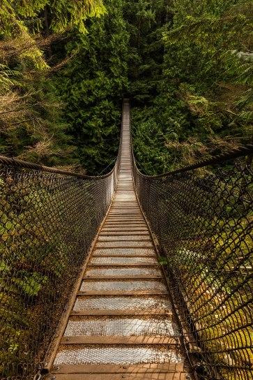800px-Puente_colgante_sobre_el_cañón_Lynn,_Vancouver,_Canadá,_2017-08-14,_DD_10